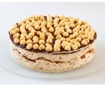 מוס אגוזי לוז